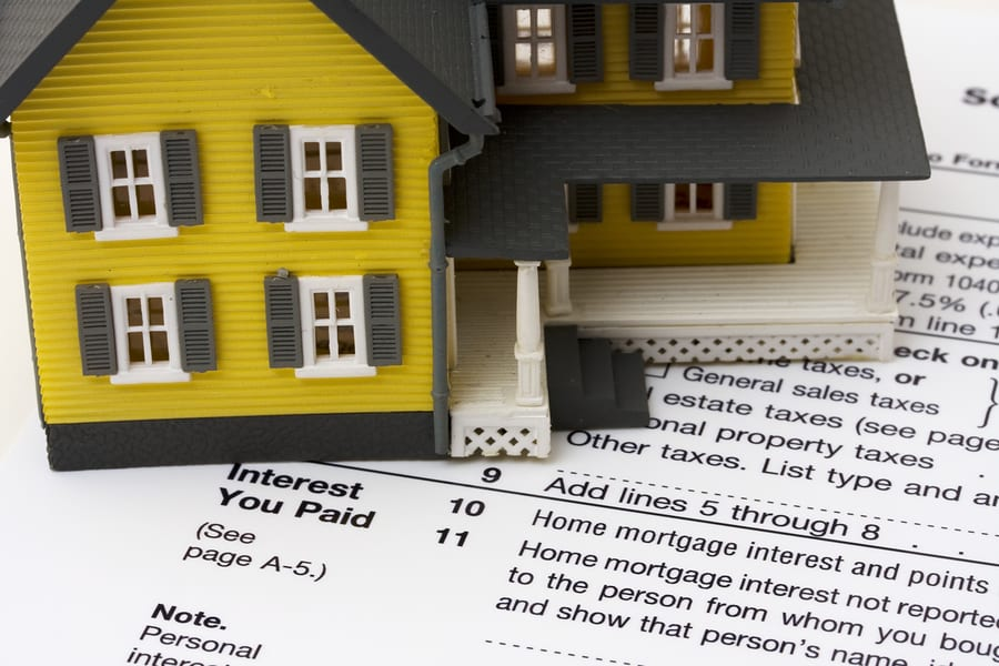 pay your property taxes